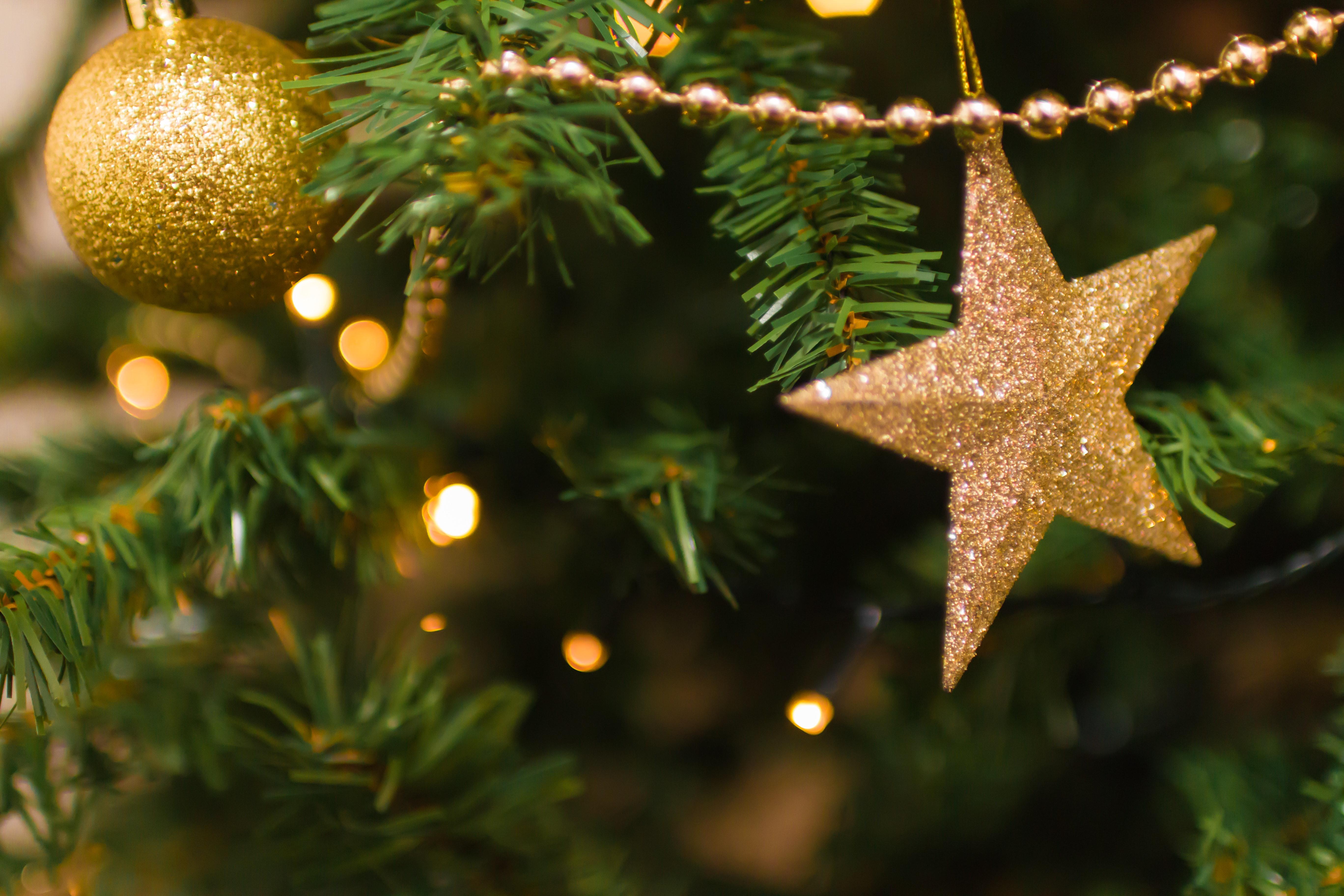 Surpreenda sua equipe neste Natal